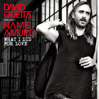 David Guetta feat. Namie Amuro - What I Did For Love